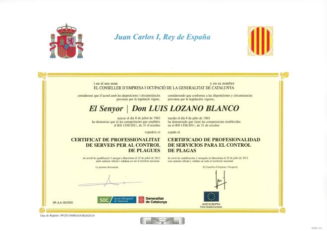 certificado louis 2 jpg