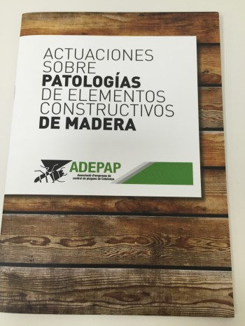 Bases de Datos tratamientos de madera
